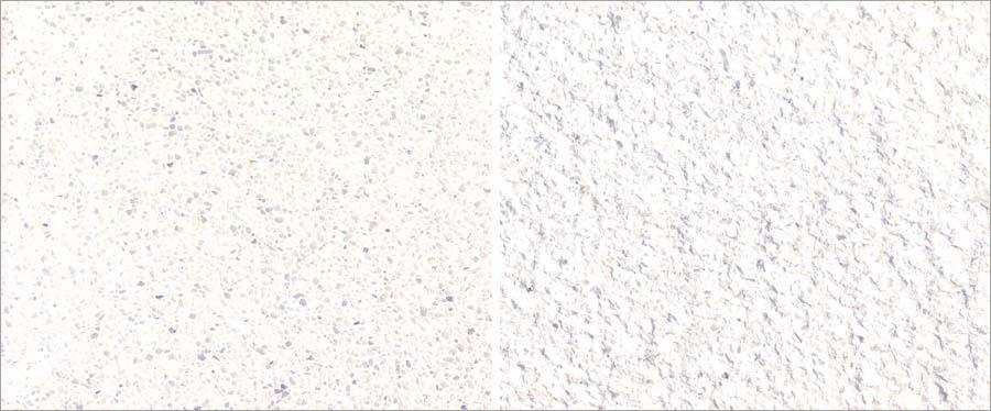 1.oxy-화이트-1.jpg